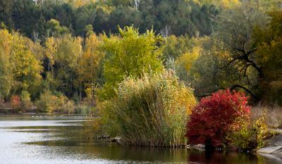 Осень, цветокоррекция