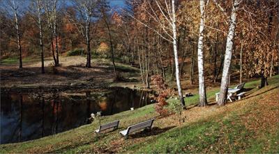 Красовалась осень в октябре...