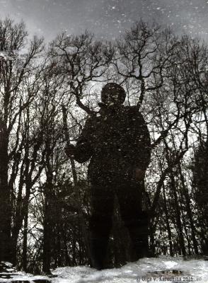 Превращение отражение трансформация превращение человек дерево