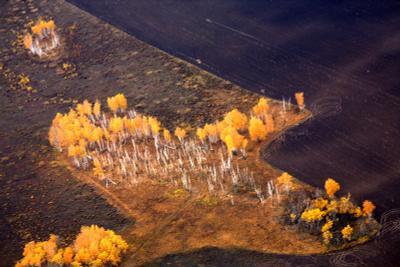 самолет омская область осень с вертолета самолет
