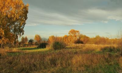 Уютная полянка. осень пейзаж