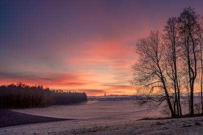 Предрассветный свет восход свет деревья силуэты небо иней Германия Бавария