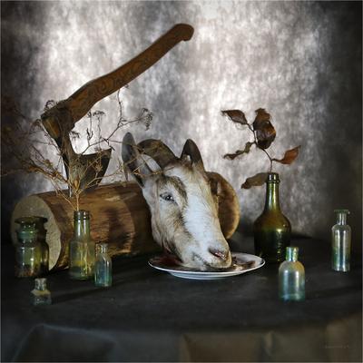 stillife with goat`s head dakimo.ru
