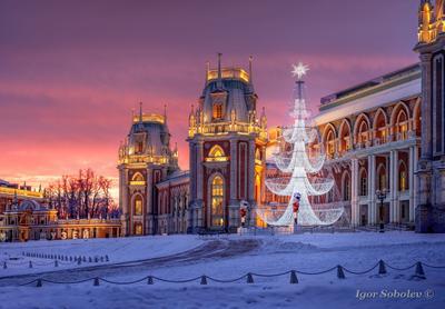 Зимний рассвет в Царицыно зима царицыно рассвет москва