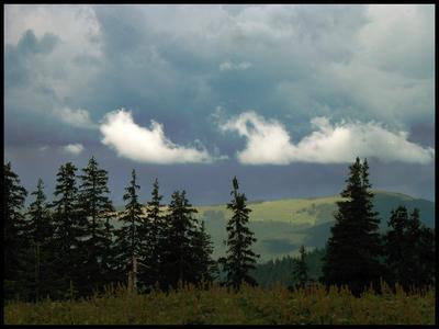 Миг Истины карпаты облака