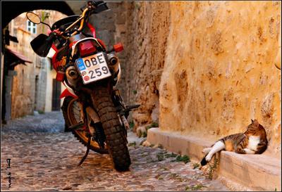 Улицы старого города Родос Греция Старый город Мальтийский орден Средиземноморье мотоцикл кот