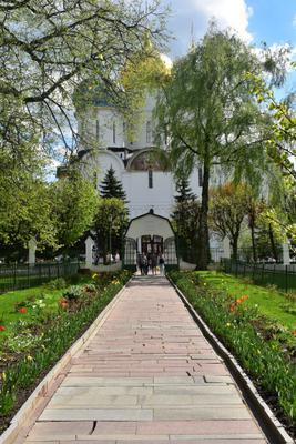 К Успенскому собору... Сергиев Посад Троице-Сергиева Лавра монастырь Успенский собор