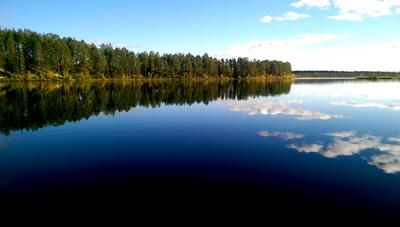 Зеркало природы Природа зеркало лес вода осень карелия