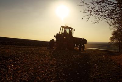 Агроромантика поле трактор романтика