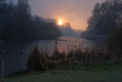 St. James's Park на закате в метель Лондон парк закат птицы пруд