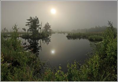Утро на Шатурских болотах ... Шатура