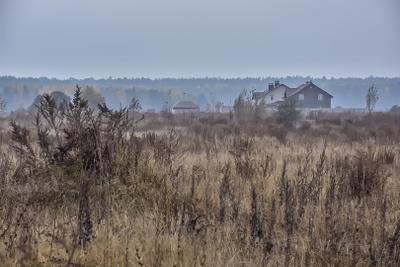 Туманное утро Природа поле домик пейзаж утро туман горизонт