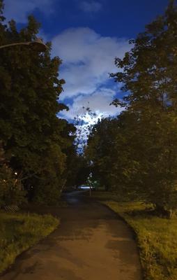 Вечерняя акварель вечер природа прогулка
