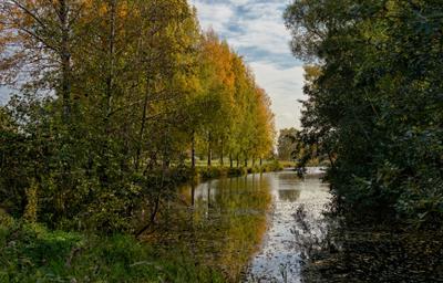 Осенний мотив СПб парк Муринский ручей осень