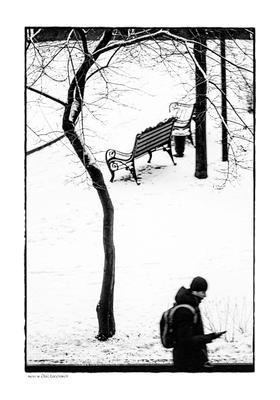 зимний вид из окна зима человек скамейка деревья снег чб