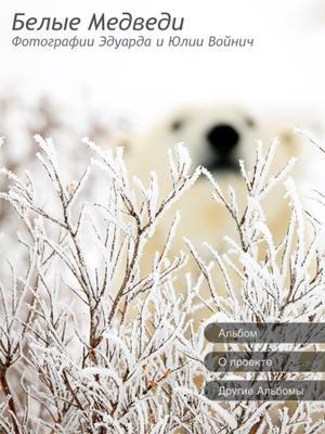 Альбом Белые Медведи белые медведи животные север альбом