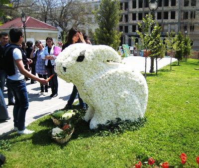 Весенний зайчик :) белая гвоздика зайчик весна цветы улыбки отличное настроение
