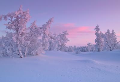 Заполярье заполярье крайний север Ненецкий автономный округ