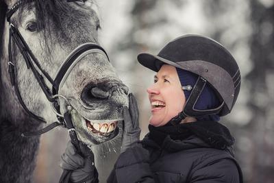 Анекдоты Конь портрет анекдоты