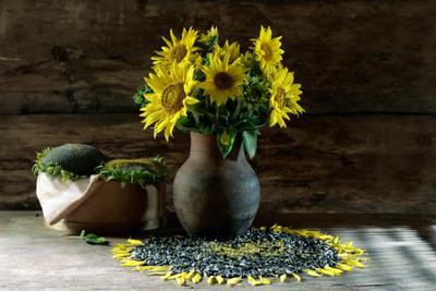 Последний лучик лета Желтый солнечный подсолнух деревенский