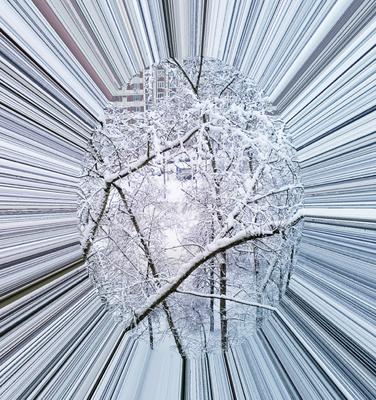 Зима из окна.2018 год Снег