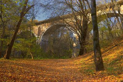 Еще одна осень столетнего моста мост осень утро