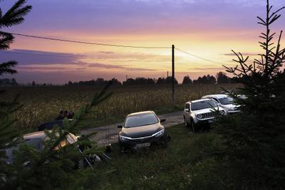 Рассвет перед рыбалкой кукуруза рассвет рыбалка солнечные лучи солнечный свет солнце Борисполь