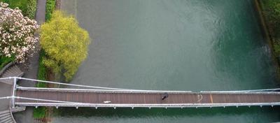 Недлинная история про мост река, мост, собака, дождь, Швейцария