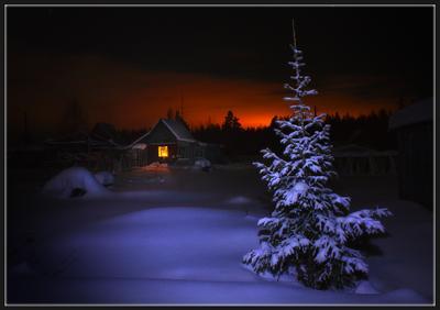 Заглянуть на огонёк... (2) домик лес январь зима ночь пихта окно огонек
