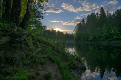 Утро на реке пейзаж восход река утро