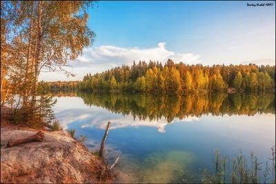 осенний возерный озеро лес осень вечер