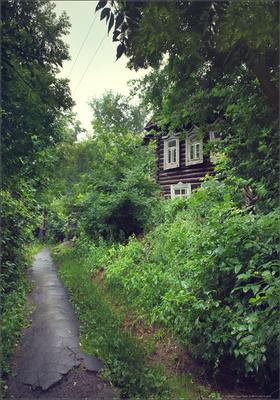 Старого дворика тихая улочка..