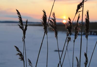 Начало дня Карелия Онежское озеро восход солнце
