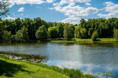 Лето а парке Кузьминки лето парк природа пейзаж пруд мост облака