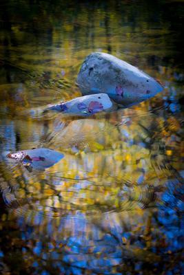 Отражение Осень река отражение камни