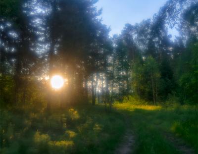 Летний сон пейзаж лето утро восход