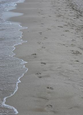 нам остаются следы на песке море, следы, песок