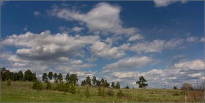 * Облака  плывут,  облака ... * весна май деревья облака