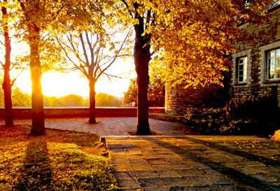 Осенний Таллинн Осень Таллинн Эстония