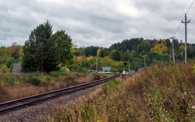 Пронино сев сжд жд осень вид пейзаж транспорт путь дорога тёбза тебза галич перегон пронино