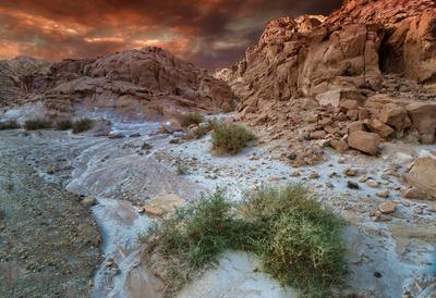 Пустыня Негев, Израиль израиль пустыня негев эйлат камни геология