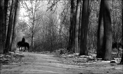 Сонная лощина... конный патруль