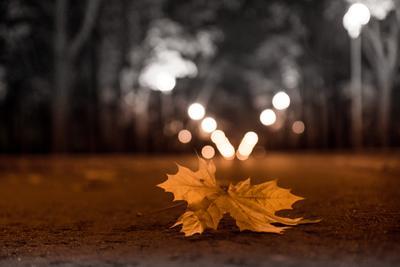 Настроение - осень осень