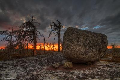 Свидетель вечности Карелия Воттоваара закат лес дерево камни камень сейд