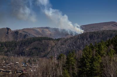 Пожар на Торгашинском хребте Красноярск Торгошинский хребет пожар 30 апреля 2018 года