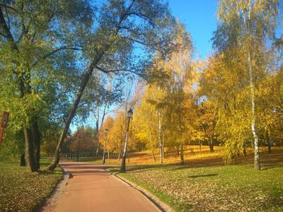 Осень Царицино парк осень
