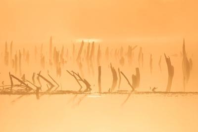 Оранжевое озеро рассвет озеро