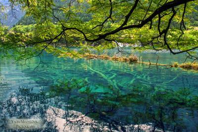 ~~~ Jiuzhaigou #24 ~~~ Jiuzhaigou Цзючжайгоу долина-9_деревень Jiuzhai_valley China Китай vakomin