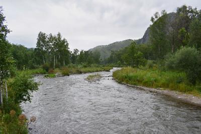 р.Сема Горный Алтай пейзаж реки Сема nataly-teplyakov