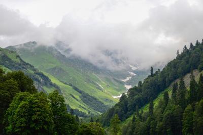 Альпийские луга Альпийские луга Кавказ горы снег летом